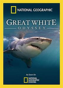 Watch Free Great White Odyssey (2008)