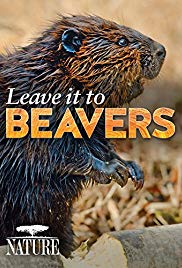 Watch Free Leave It to Beavers (2014)