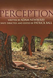 Watch Free Perception (2019)