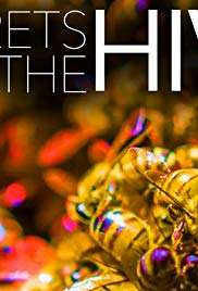 Watch Free Secrets of the Hive (2015)