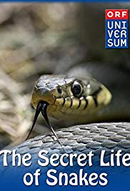 Watch Full Movie :The Secret Life of Snakes (2016)