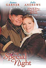 Watch Free One Special Night (1999)
