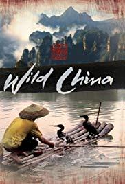 Watch Free Wild China (2008 )
