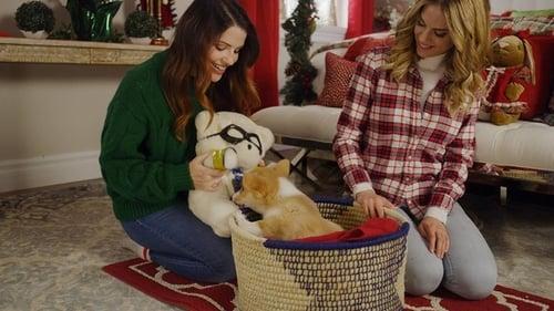 Watch Free A Very Corgi Christmas (2019)