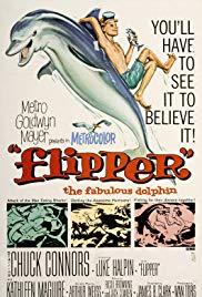 Watch Free Flipper (1963)