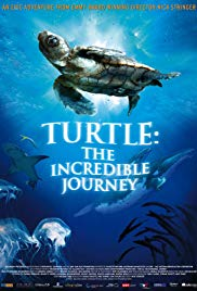 Watch Free Turtle: The Incredible Journey (2009)