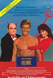 Watch Free Hunk (1987)