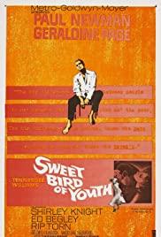 Watch Free Sweet Bird of Youth (1962)