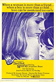 Watch Free Secret World (1969)