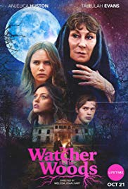 Watch Free The Watcher in the Woods (2017)