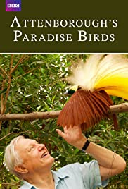 Watch Free Attenboroughs Paradise Birds (2015)