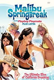 Watch Free Malibu Spring Break (2003)
