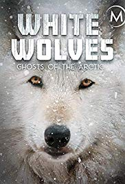 Watch Free White Wolves: Ghosts of the Arctic (2017)