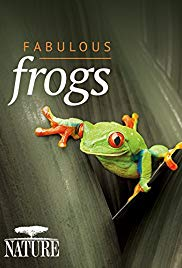 Watch Free Fabulous Frogs (2014)