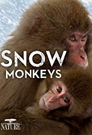 Watch Free Snow Monkeys (2014)