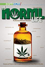 Watch Free A Norml Life (2011)