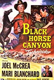 Watch Free Black Horse Canyon (1954)