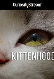 Watch Free Kittenhood (2015)