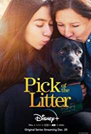 Watch Free Pick of the Litter (2018)