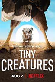 Watch Free Tiny Creatures (2020 )
