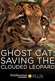 Watch Free Ghost Cat: Saving the Clouded Leopard (2007)
