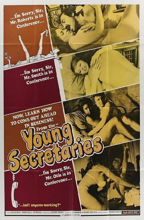 Watch Free The Young Secretaries (1974)