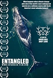 Watch Full Movie :Entangled: The Race to Save Right Whales from Extinction (2020)