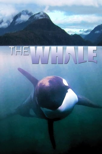 Watch Free The Whale (2011)
