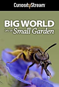 Watch Free Big World in a Small Garden (2016)