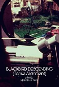 Watch Free Blackbird Descending (1977)