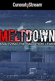 Watch Free Meltdown: Analyzing the Radiation Leaks (2015)
