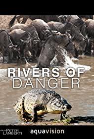 Watch Free Rivers of Danger (2004)