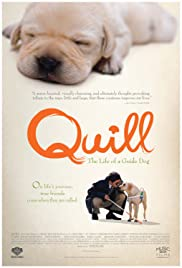 Watch Free Quill: The Life of a Guide Dog (2004)