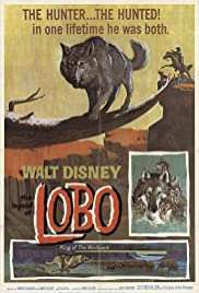 Watch Free The Legend of Lobo (1962)