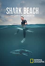 Watch Free Shark Beach (2021)