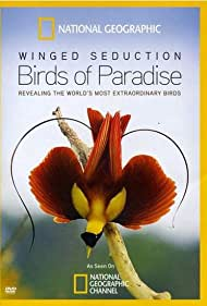 Watch Free Winged Seduction: Birds of Paradise (2012)