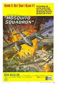 Watch Free Mosquito Squadron (1969)