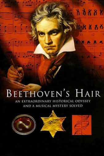 Watch Free Beethovens Hair (2005)