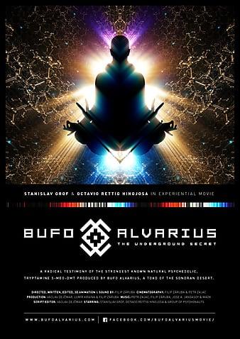 Watch Free Bufo Alvarius  The Underground Secret (2018)