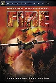 Watch Free Fire (2004)