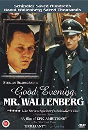 Watch Free Good Evening, Mr. Wallenberg (1990)