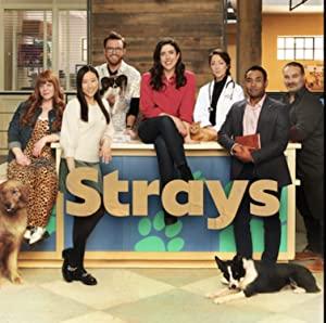 Watch Free Strays (2021 )