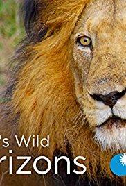 Watch Free Africas Wild Horizons (2015 2016)