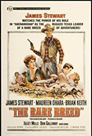 Watch Free The Rare Breed (1966)