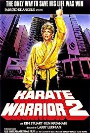 Watch Free Karate Warrior 2 (1988)