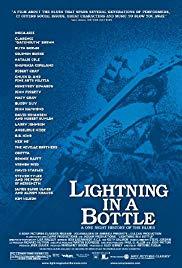 Watch Free Lightning in a Bottle (2004)