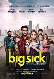 Watch Free The Big Sick (2017)