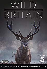 Watch Free Wild Britain