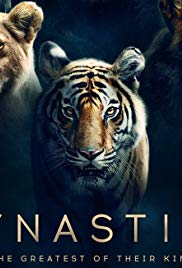 Watch Free Dynasties (2018 )