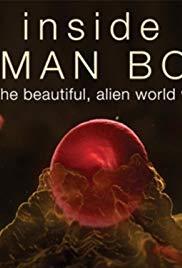 Watch Free Inside the Human Body (2011 )